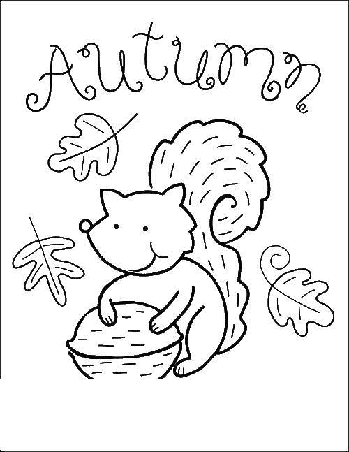 """Раскраска Осенний листопад Скачать Пони, """"My little pony"""".  Распечатать ,Пони,"""
