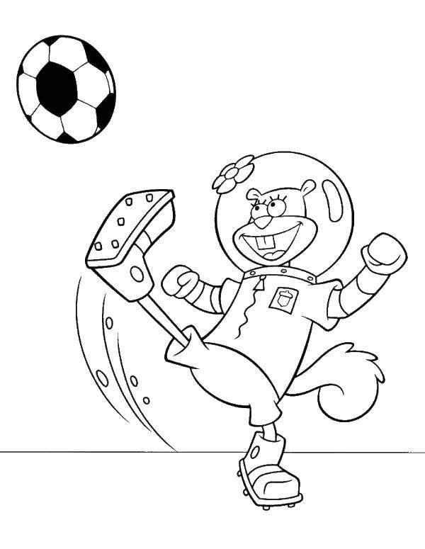 Раскраска Футбол Скачать лисица, глаза, магазин.  Распечатать ,мой маленький зоомаганиз,