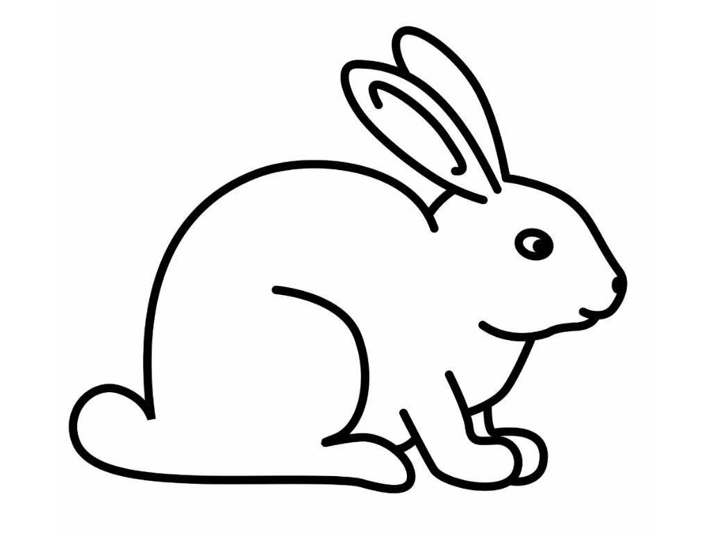 Раскраска Рисунок зайца Скачать заяц, кролик.  Распечатать ,домашние животные,