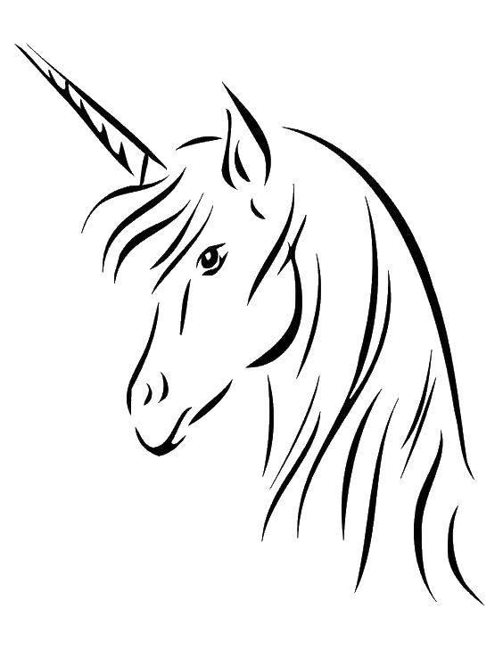 Раскраска Грациозная лошадь единорог Скачать Волшебное создание.  Распечатать ,Волшебные создания,