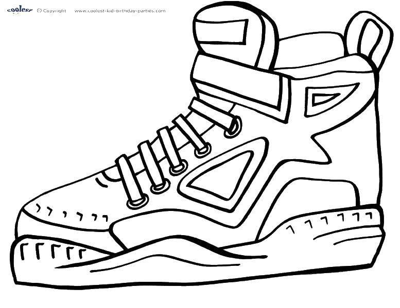 Раскраска обувь Скачать баран.  Распечатать ,домашние животные,