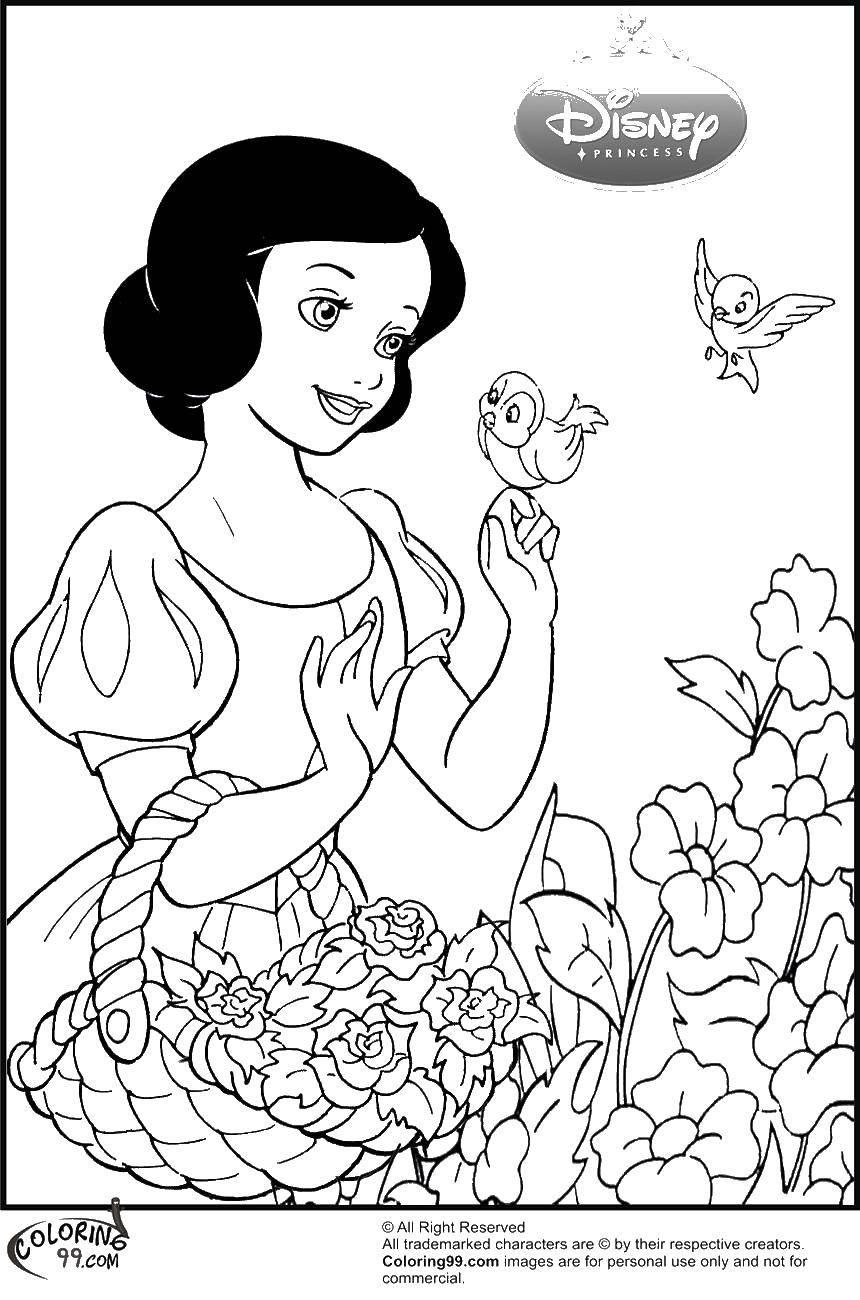 Раскраска Белоснежка с птицами и цветами Скачать принцессы, мультфильмы, сказки, Белоснежка.  Распечатать ,белоснежка,