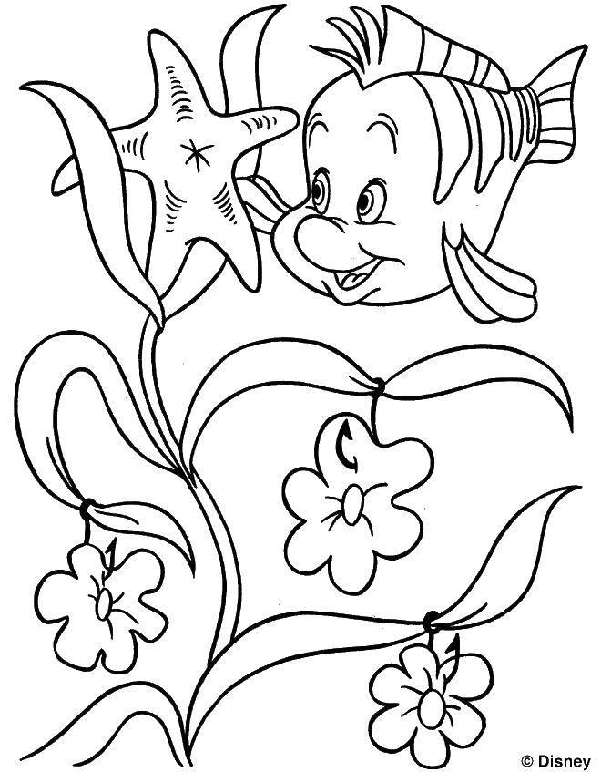 Раскраска Рыбка у водорослей. Скачать Диснеевские мультфильмы, рыбка, водоросли.  Распечатать ,Диснеевские мультфильмы,