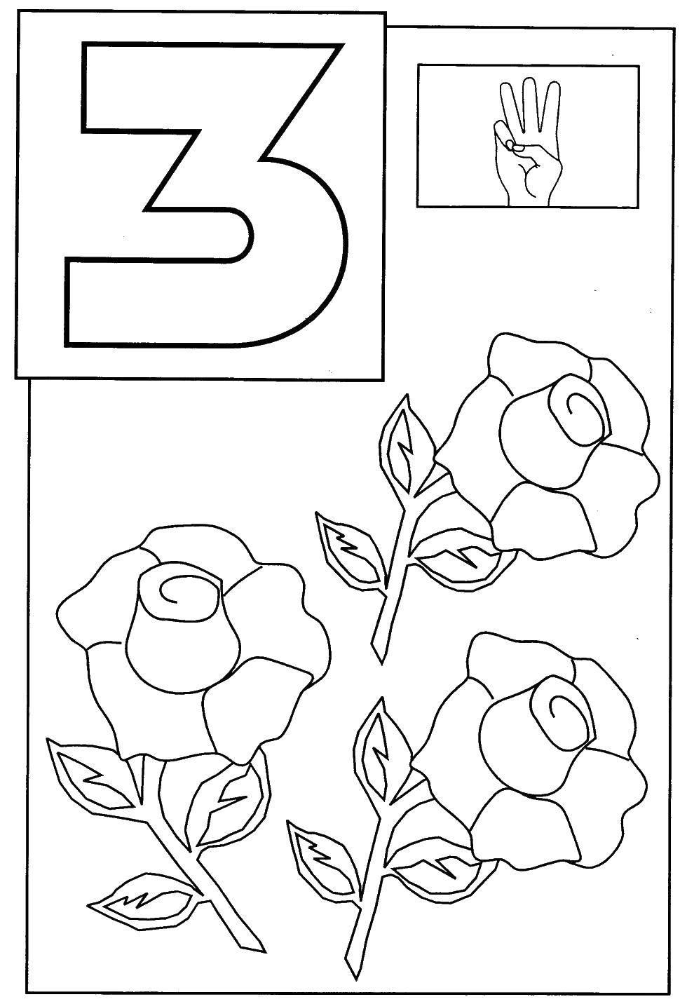 Раскраска Три розы. Скачать счет, цифры, три.  Распечатать ,Учимся считать,