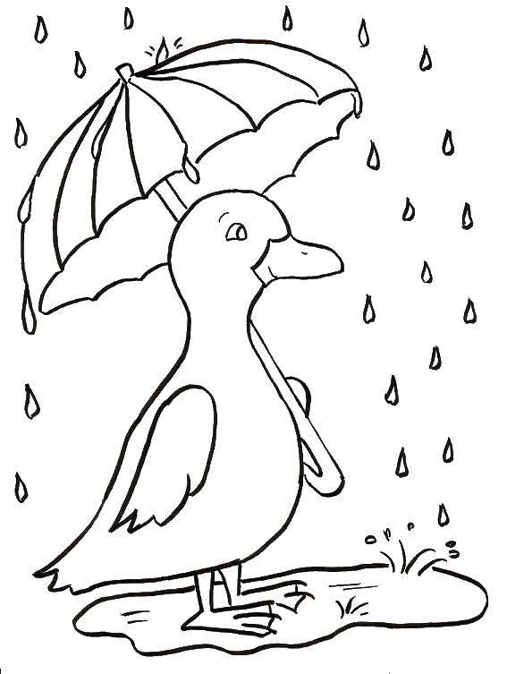 Раскраска дождь Скачать ,Парк Юрского периода,.  Распечатать