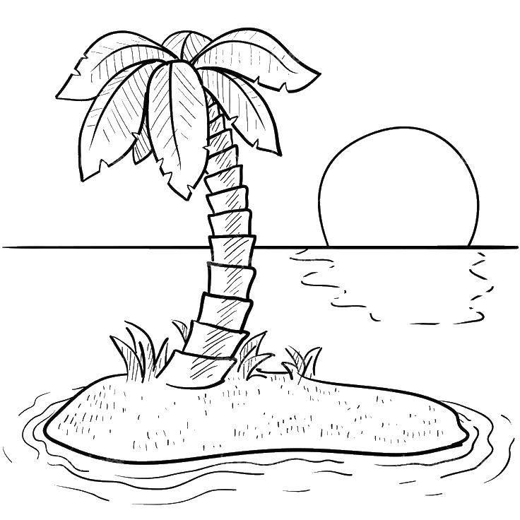 Раскраска отдых Скачать ,пляж, пальма,.  Распечатать