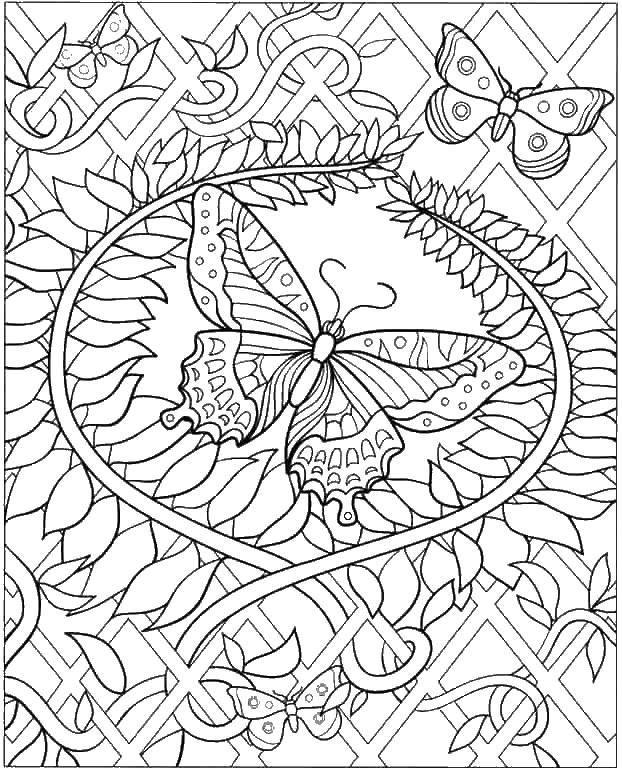 Раскраска Бабочки и узорчики. Скачать антистресс, узоры, цветы, бабочки.  Распечатать ,раскраски антистресс,