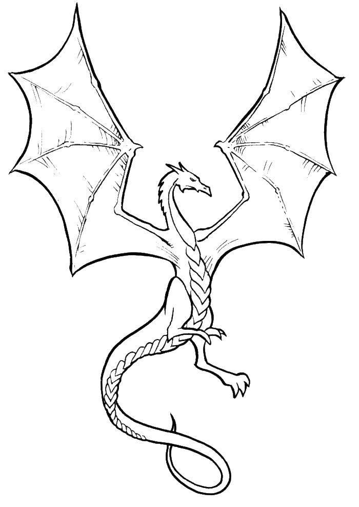Раскраска Дракон расправил большие крылья Скачать Драконы.  Распечатать ,Драконы,
