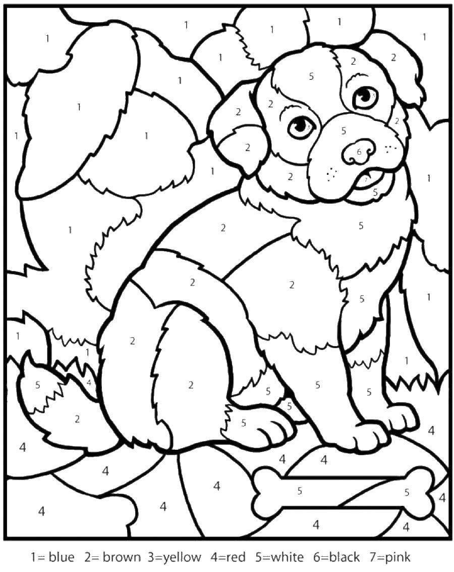 Название: Раскраска Раскрась по цифрам пёсика и косточку. Категория: По номерам. Теги: Образец, цифры.