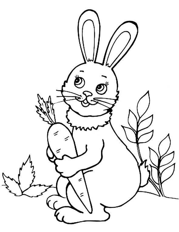Раскраска домашние животные Скачать мультфильмы, кирби.  Распечатать ,Кирби,