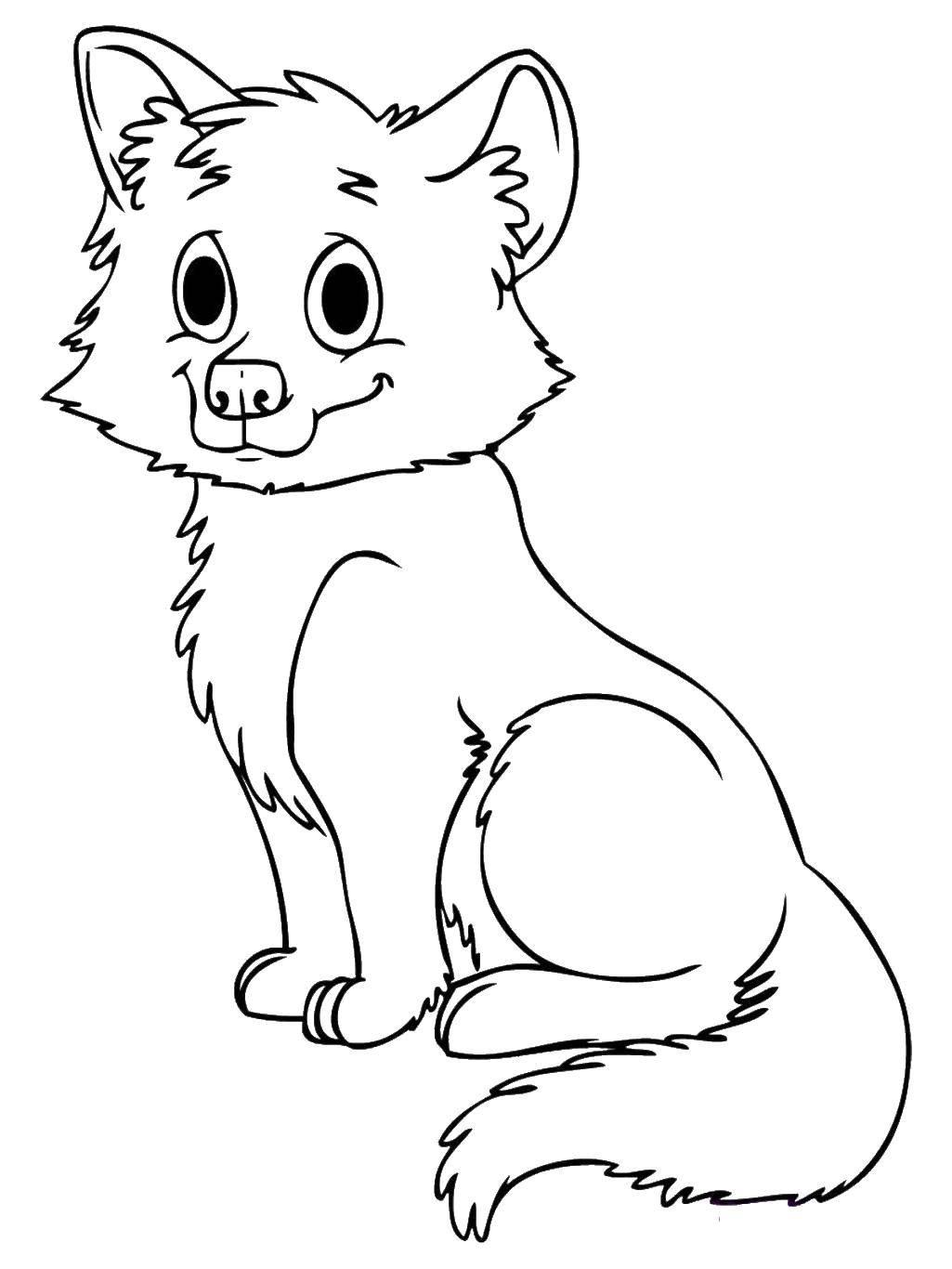 Раскраска Щеночек любит поиграть. Скачать Животные, собака.  Распечатать ,детеныши животных,