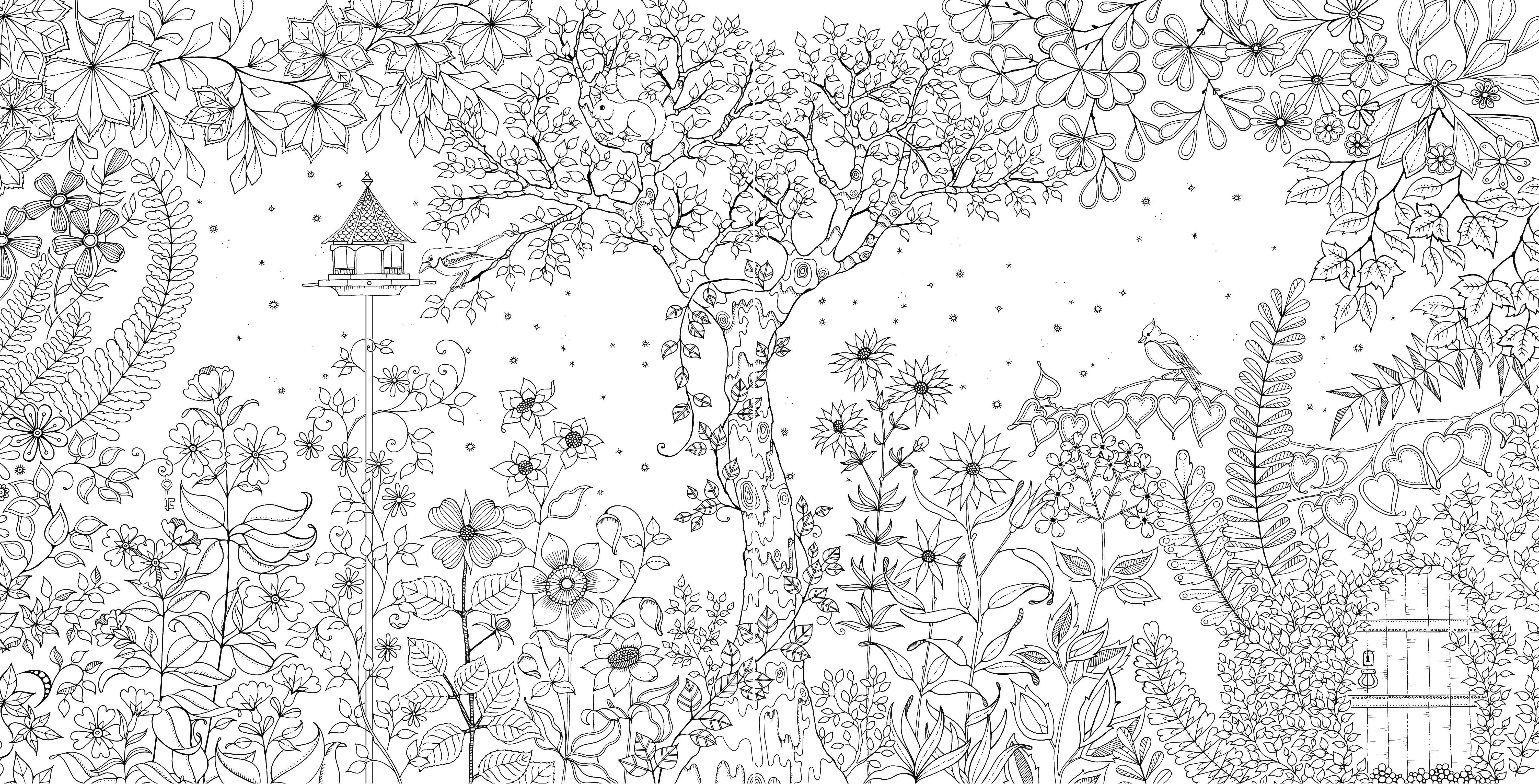 Раскраска Цветочный сад Скачать цветы, сад.  Распечатать ,раскраски антистресс,