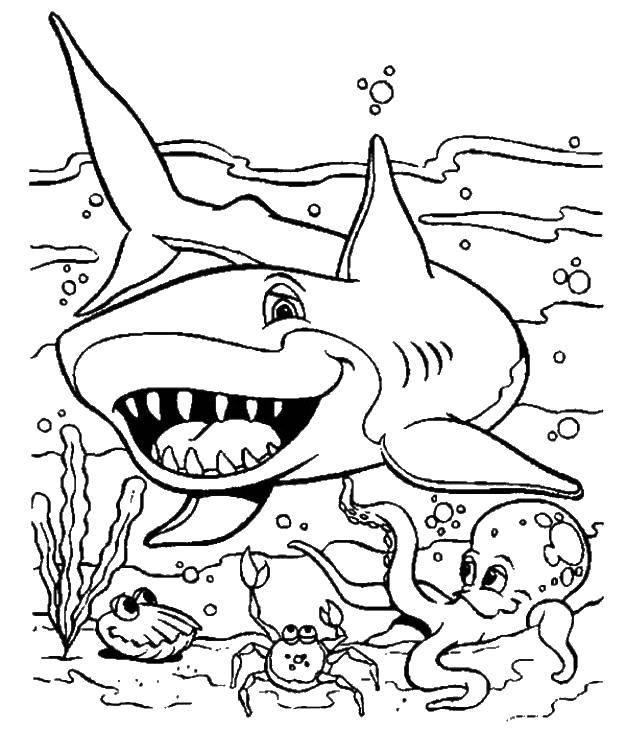 Раскраска морское Скачать животные, собака, щенята.  Распечатать ,домашние животные,