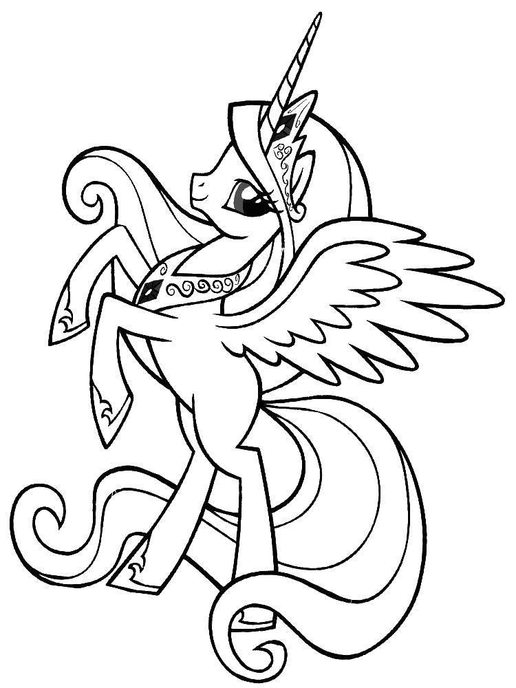Раскраска Единорог с крыльями Скачать пони, единороги, крылья.  Распечатать ,Пони,