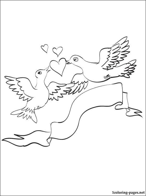 Раскраска Любовь между птицами Скачать Птицы.  Распечатать ,Птицы,