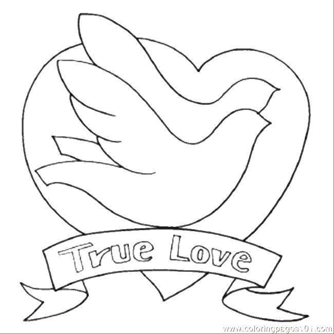 Раскраска Настоящая любовьде Скачать День Святого Валентина, любовь, сердце.  Распечатать ,День святого валентина,