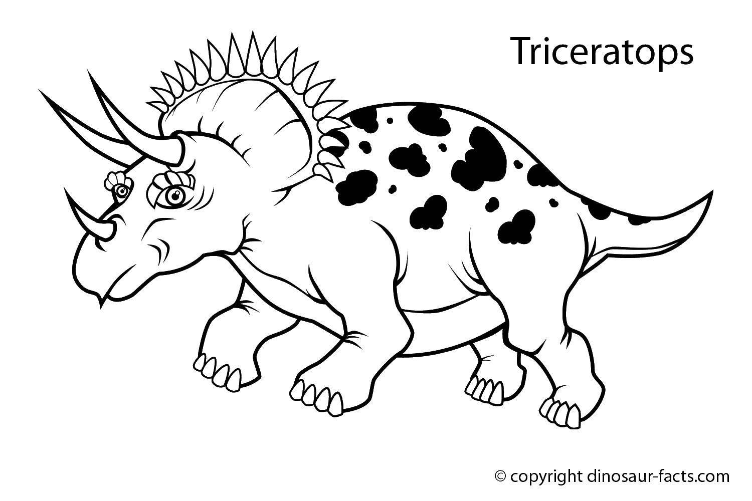 Раскраска Трицератопс с большими рогами. Скачать Динозавры.  Распечатать ,парк юрского периода,