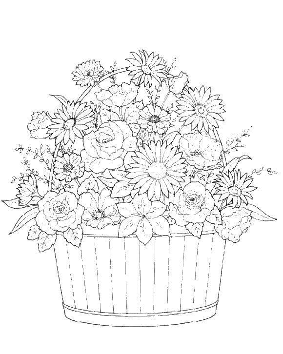 Раскраска Корзина с пышным букетом Скачать цветы, букет, корзинка.  Распечатать ,цветы,