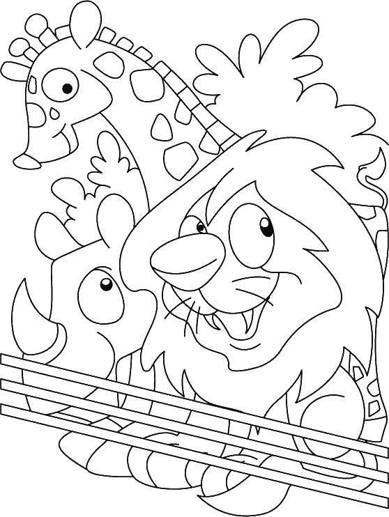 Раскраска Животные зоопарка за ограждением Скачать зоопарк, звери.  Распечатать ,Зоопарк,