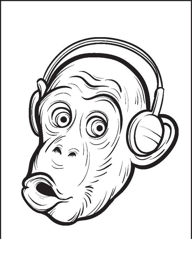 Название: Раскраска Обезьяна в наушниках. Категория: мультфильмы. Теги: обезьяна.