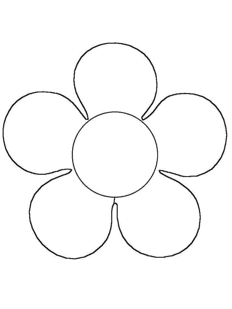 Раскраска Милый цветок Скачать Цветы.  Распечатать ,раскраски,