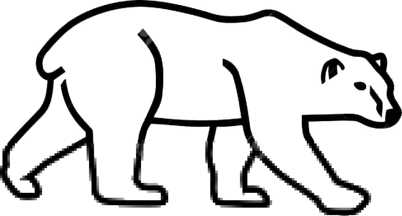 Раскраска Идущий белый медведь Скачать Животные, белый медведь.  Распечатать ,Контур медведя для вырезания,