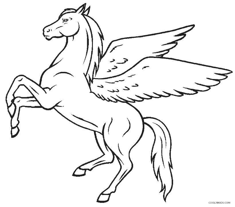 Раскраска Пегас на задних копытах Скачать ,пегас, конь, крылья,.  Распечатать