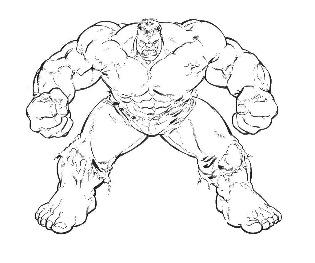 Раскраска Злой халк Скачать халк, мышцы, штаны.  Распечатать ,супергерои,