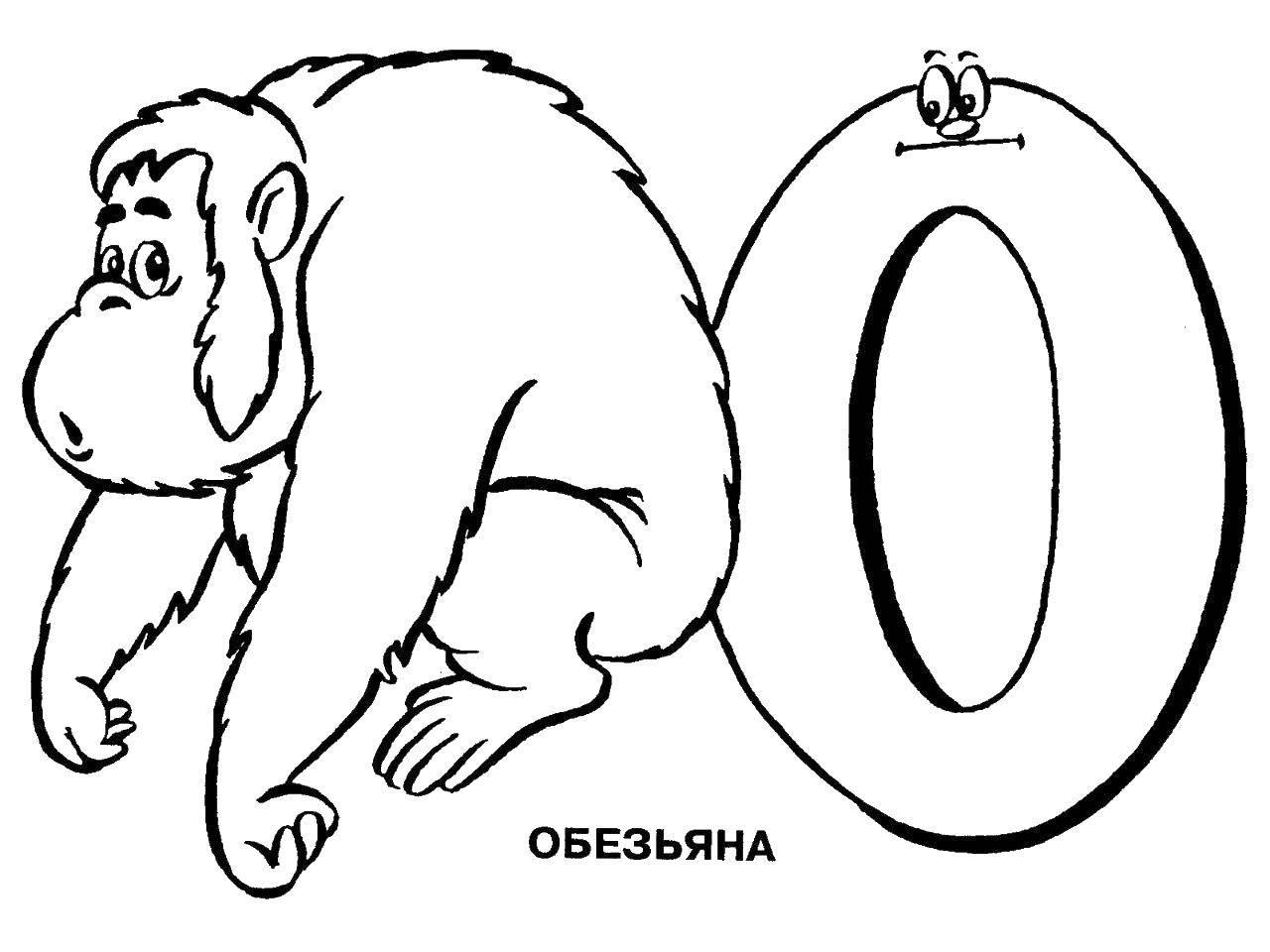 Раскраска Буква о. Скачать буква, обезьяна.  Распечатать ,алфавит,