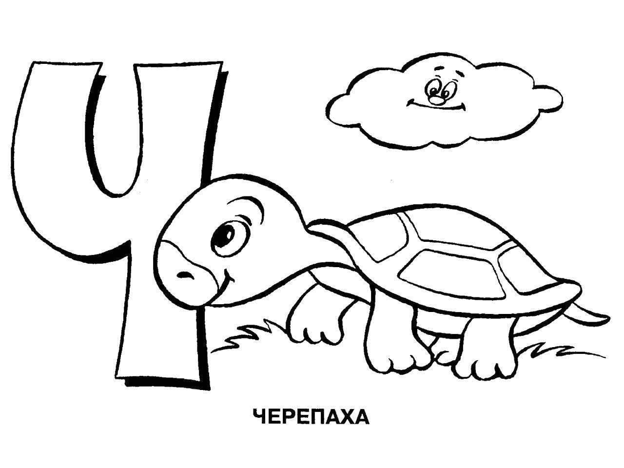 Раскраска Черепаха на букву ч. Скачать алфавит, черепаха.  Распечатать ,алфавит,