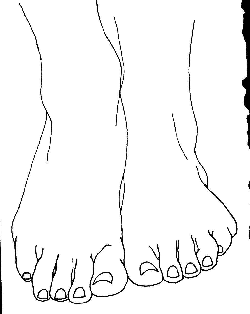 Раскраска Две ноги Скачать ноги.  Распечатать ,Люди,