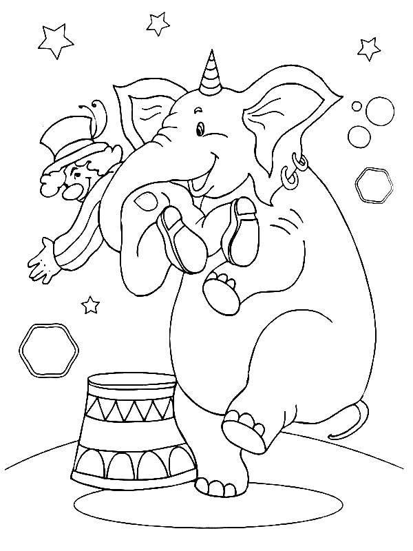 Раскраска Клоун и слон Скачать клоун, слон, колпак.  Распечатать ,цирк,