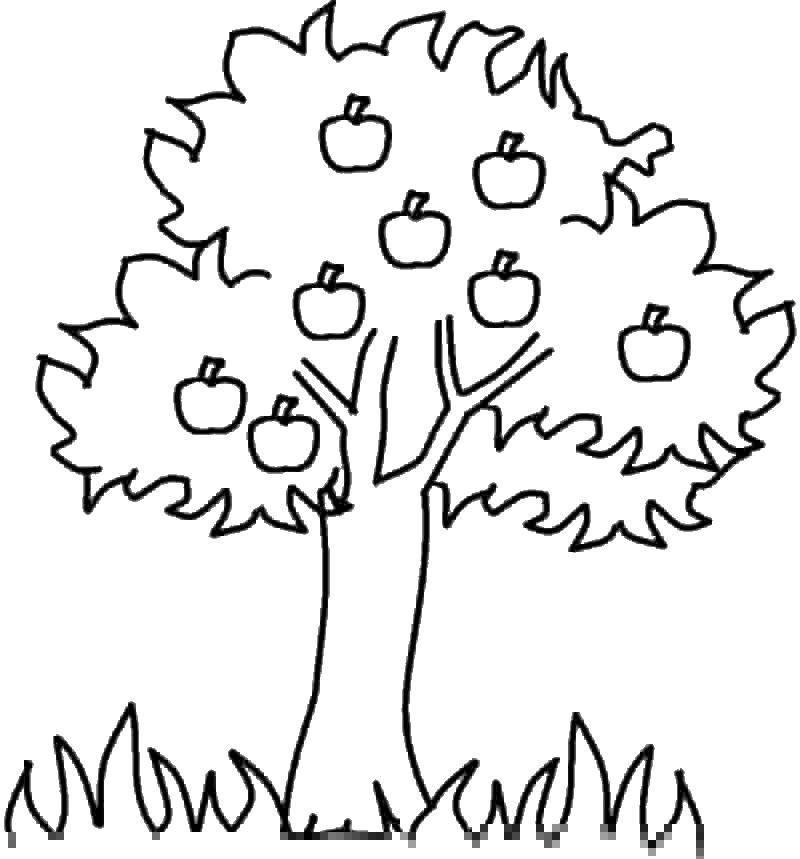 Раскраска дерево Скачать Персонаж из мультфильма, Бен Тен.  Распечатать ,Персонаж из мультфильма,