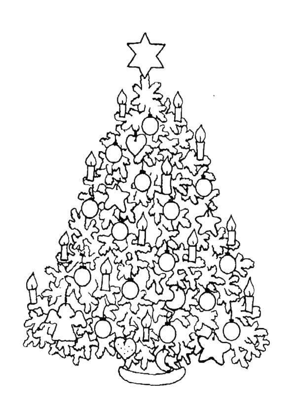 Раскраска Рождество Скачать ,тарелка, фрукты,.  Распечатать