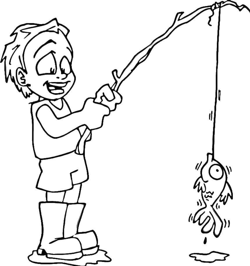 Раскраска для мальчиков Скачать Рептилия, лягушка.  Распечатать ,Раскраски для малышей,