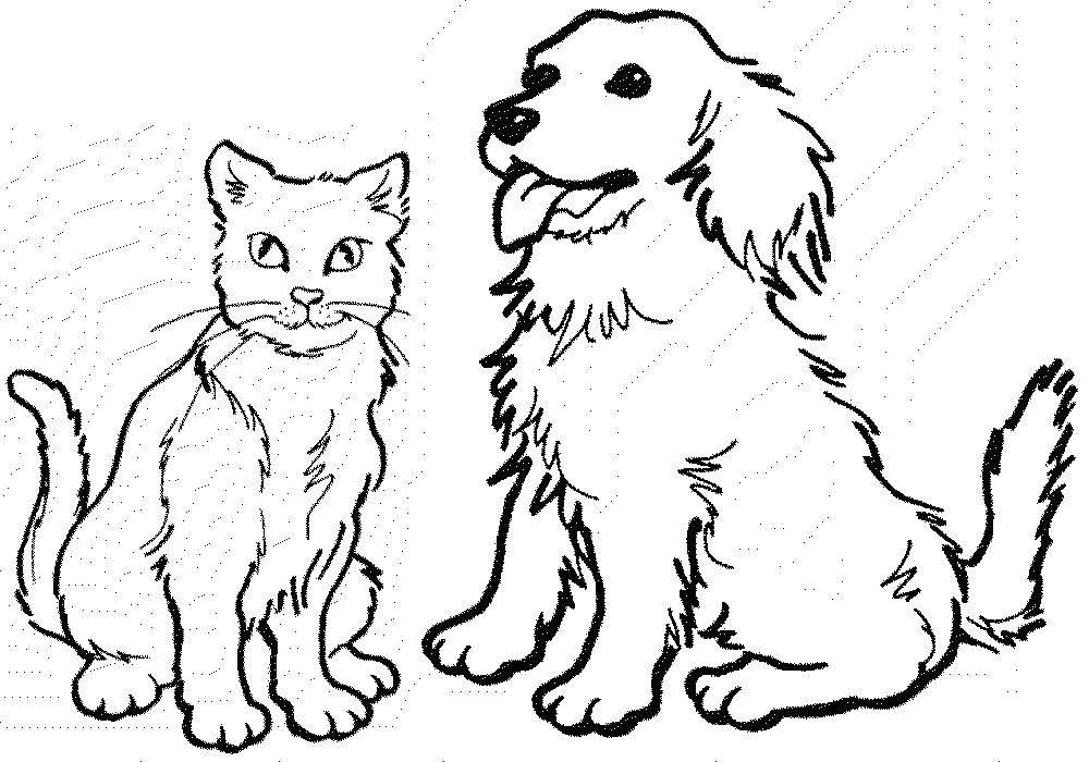 Раскраска Кошка и собака Скачать собака, кошка, хвост.  Распечатать ,раскраски,