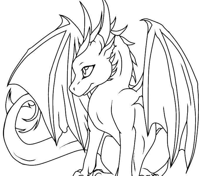 Название: Раскраска Крылатый дракончик. Категория: Драконы. Теги: драконы, крылья, сказки.