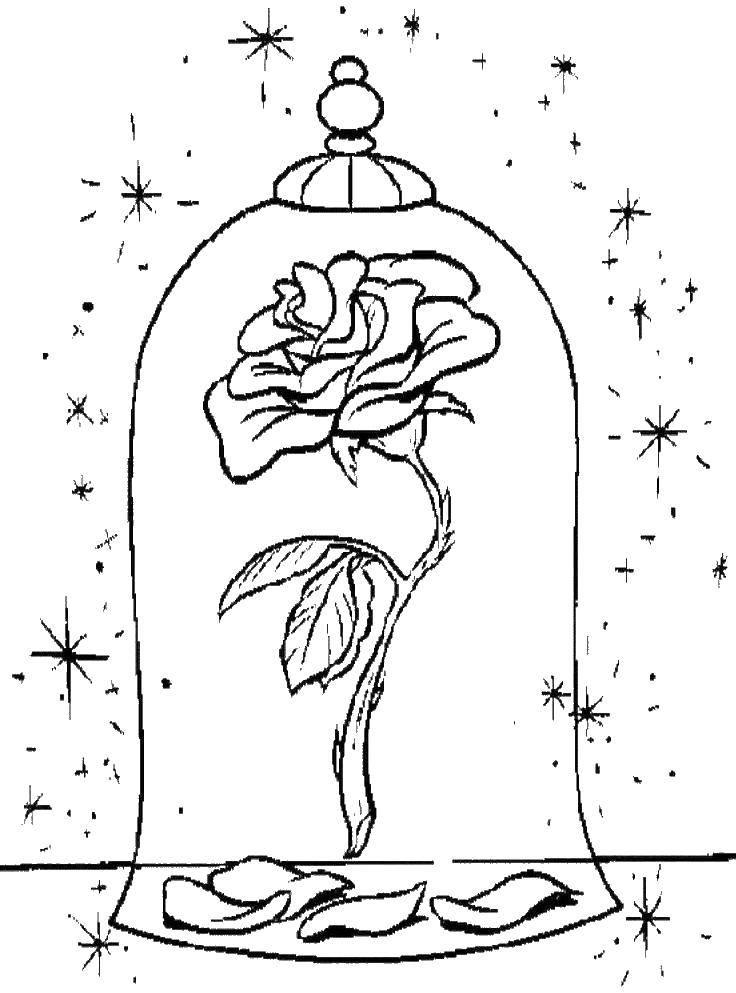 Раскраска Роза бэлль. Скачать Красавица и Чудовище, Дисней.  Распечатать ,Для девочек,