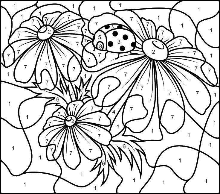 Раскраска Божья коровка и цветы Скачать божья коровка, цветы, цифры.  Распечатать ,По номерам,