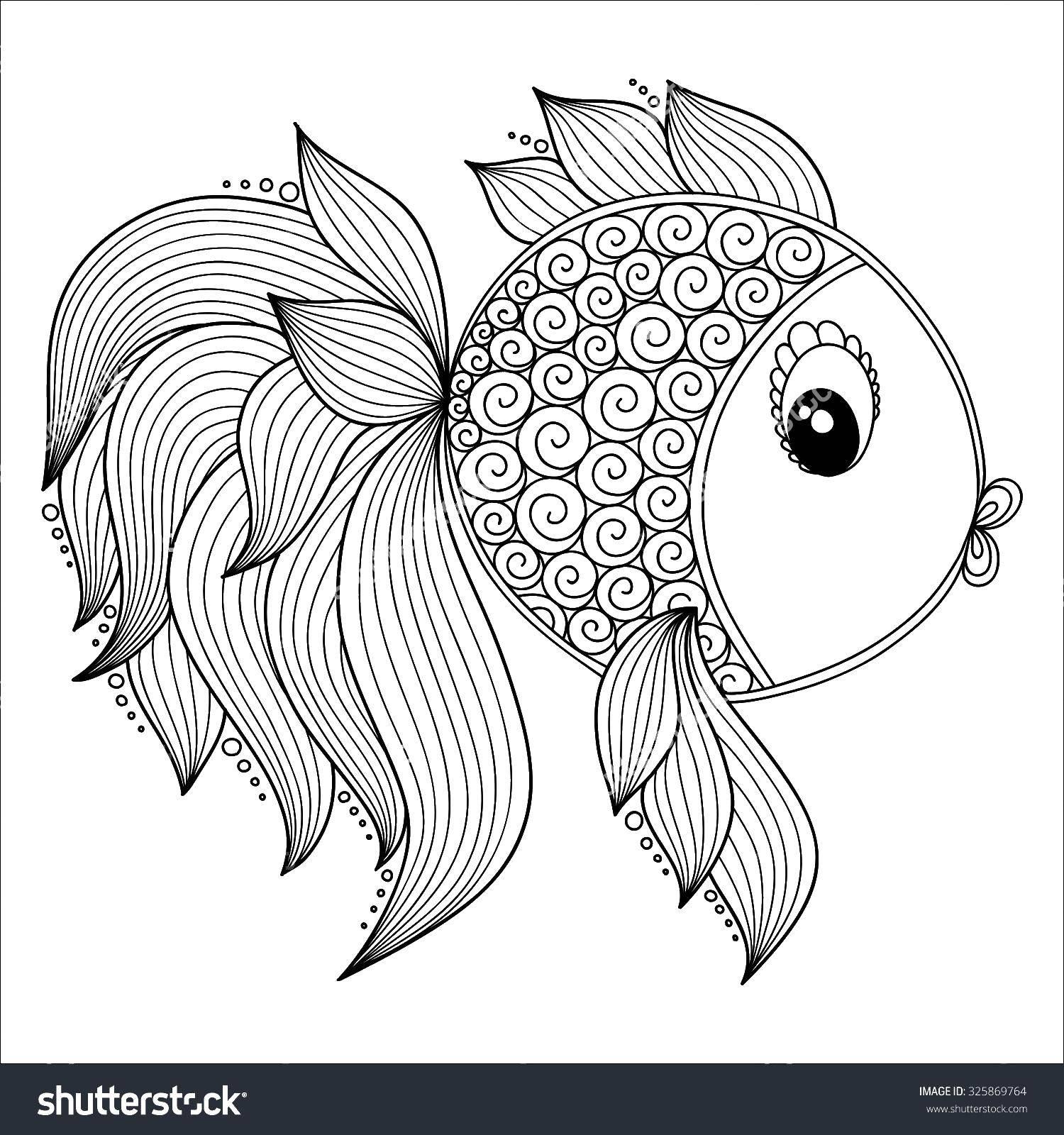 Раскраска Красивая рыбка с пышным хвостом Скачать рыбы, хвост, рыбки.  Распечатать ,Рыбы,