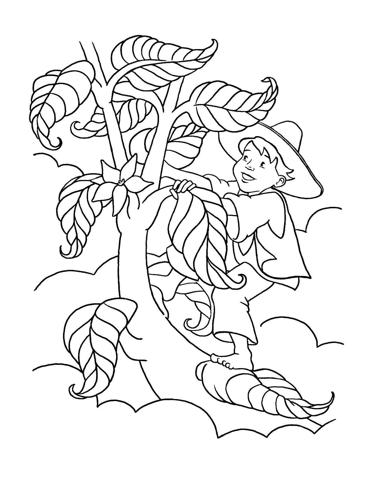 Раскраска Джек и бобовое дерево Скачать сказка, джек, бобовое дерево.  Распечатать ,Сказки,