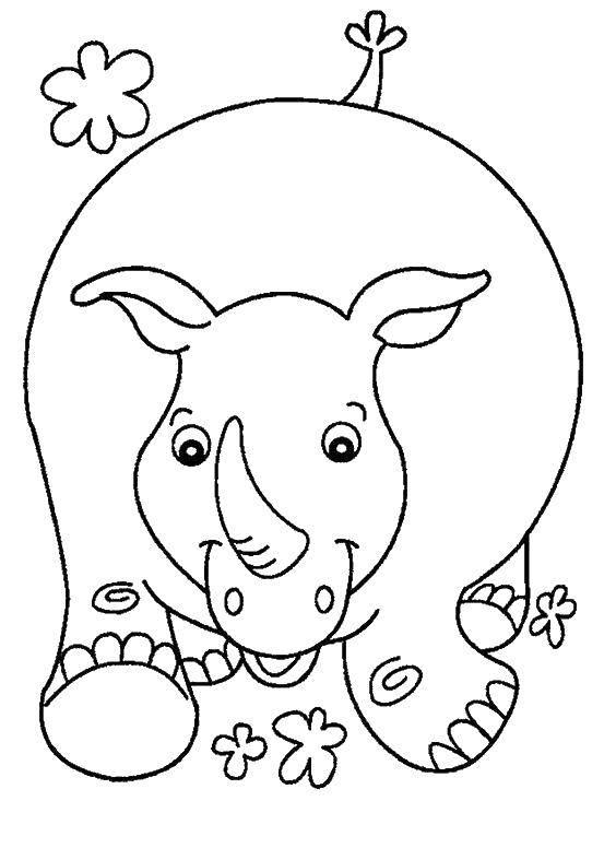 Раскраска Носорог бежит Скачать Носорог, животные.  Распечатать ,детеныши животных,