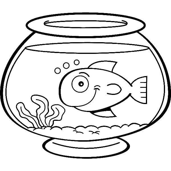 Раскраска Рыбка в аквариуме Скачать аквариум, рыбки.  Распечатать ,Рыбы,