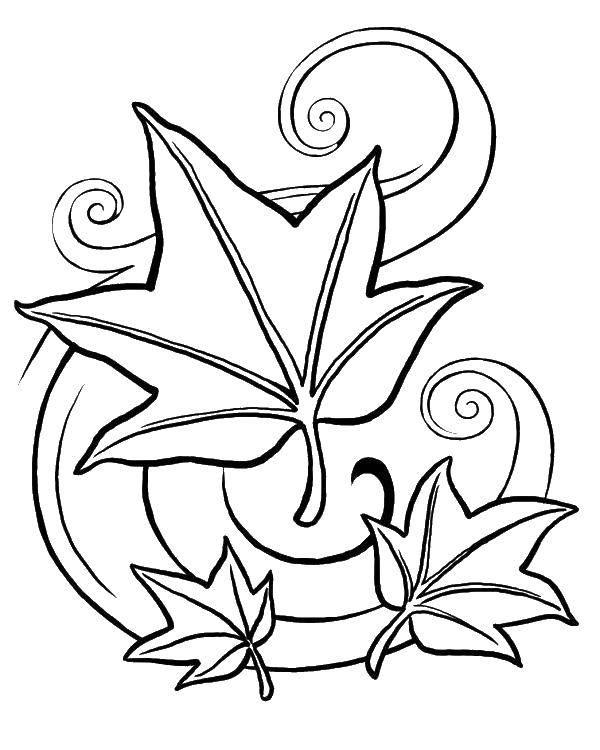 Раскраска Ветер и листва Скачать осень, листва, ветер.  Распечатать ,Осень,