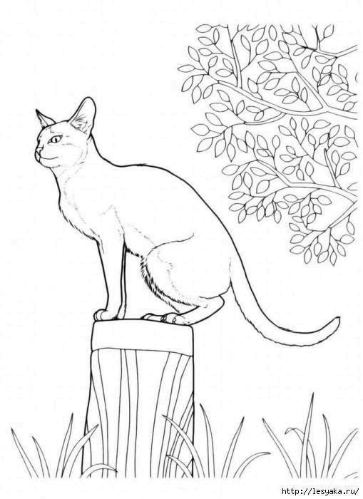 Раскраска Кошка Скачать ,гринч,.  Распечатать