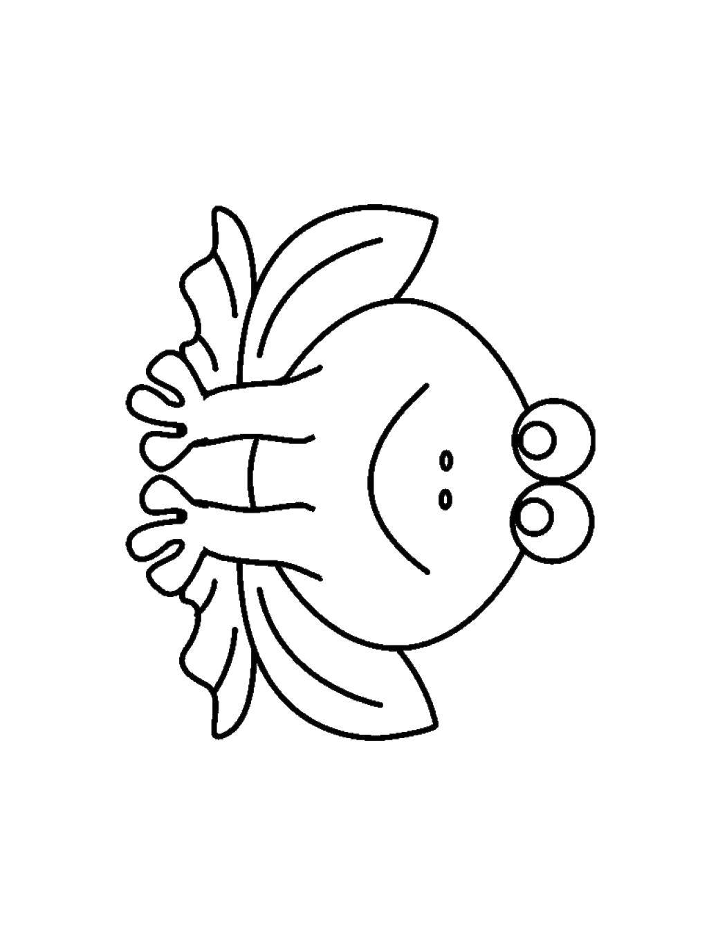 Раскраска Лягушка с большими глазами. Скачать лягушка, лапы, глаза.  Распечатать ,простые раскраски,