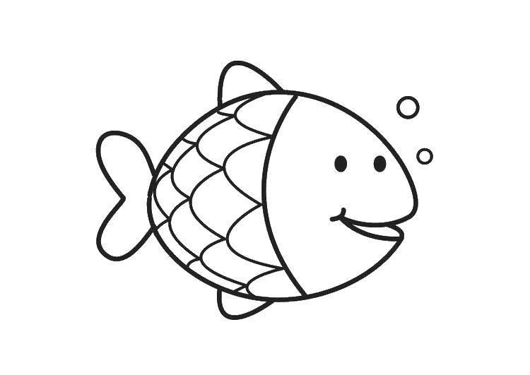Раскраска рыбы Скачать кирби, мультики, марио.  Распечатать ,Кирби,