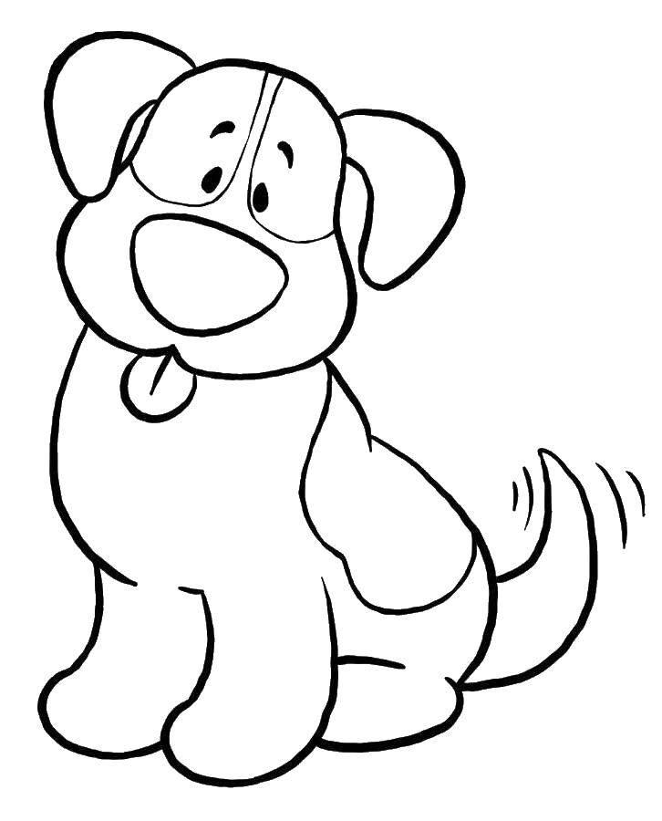 Раскраска Щенок и хвостик Скачать щенок, язык, хвост.  Распечатать ,собаки,