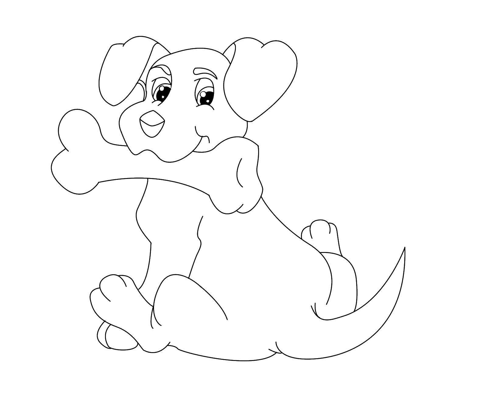 Раскраска Собака с костью Скачать собаки, животные, собака, кость.  Распечатать ,собаки,