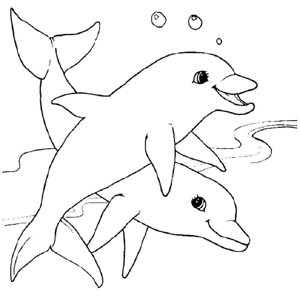 Раскраска Дельфины мирные животные Скачать Подводный мир, дельфин.  Распечатать ,дельфин,